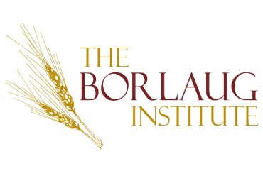 iconicsquared.com-the-borlaug-institute-logo